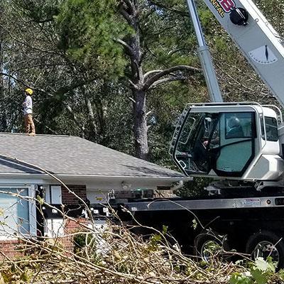 Alpharetta and Cumming Tree Removal Service